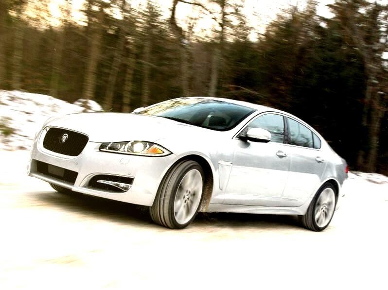 Jaguar In The Snowwww.DiscoverLavish.com