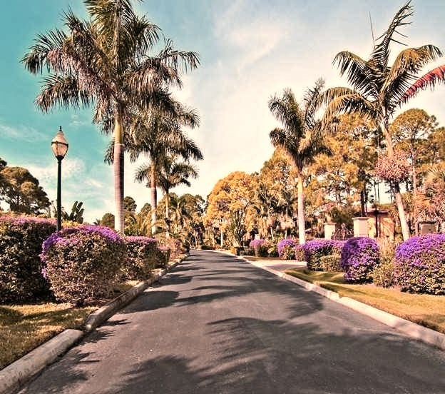 Tropical Florida Road to Mansion
