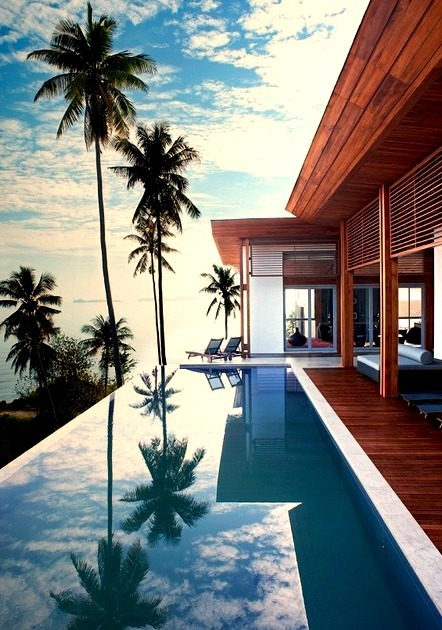 Luxury Resort and Pool With Palm Trees